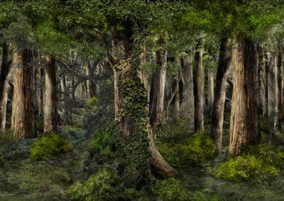 9.Wald Projektion Kopie